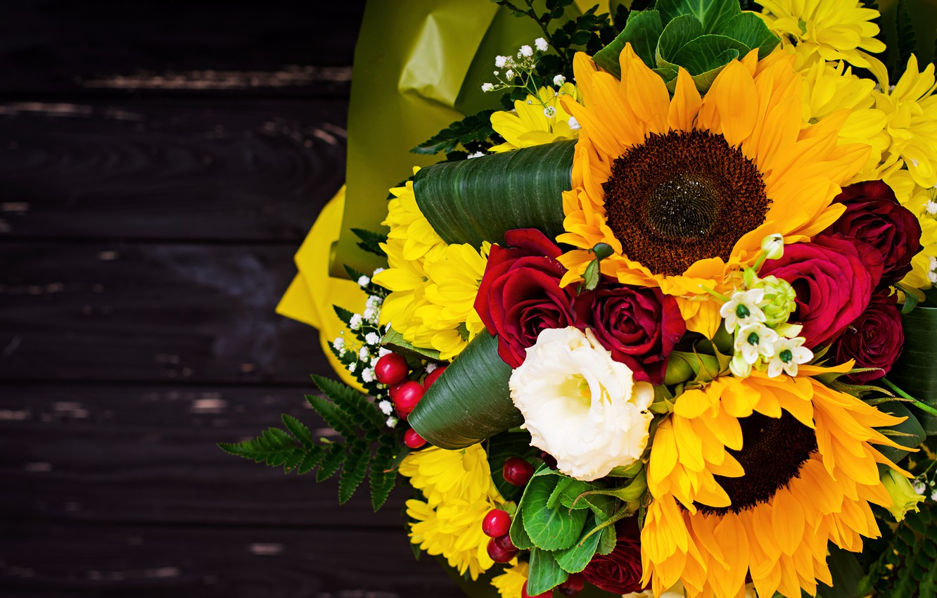 Photo wallpaper flowers, sunflower, Bouquet