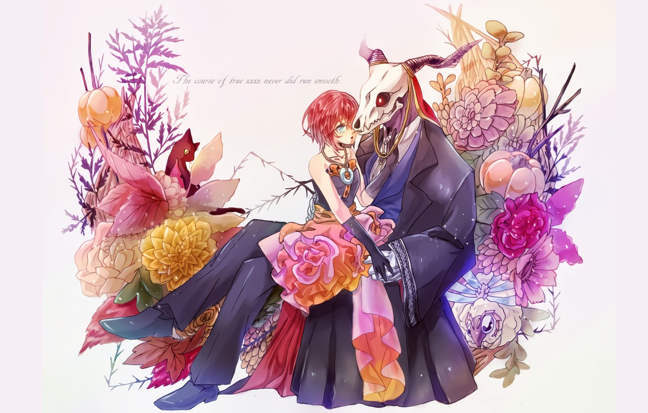 Photo wallpaper anime, art, two, Bride of the sorcerer