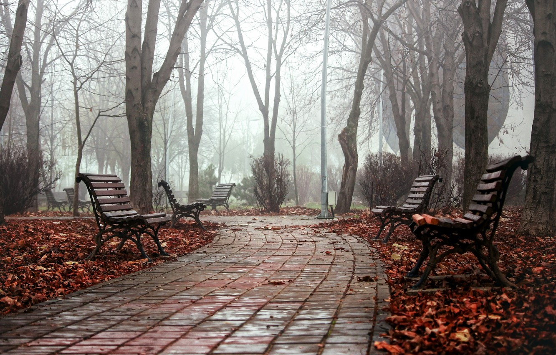 Photo wallpaper autumn, the city, fog, Park, bench