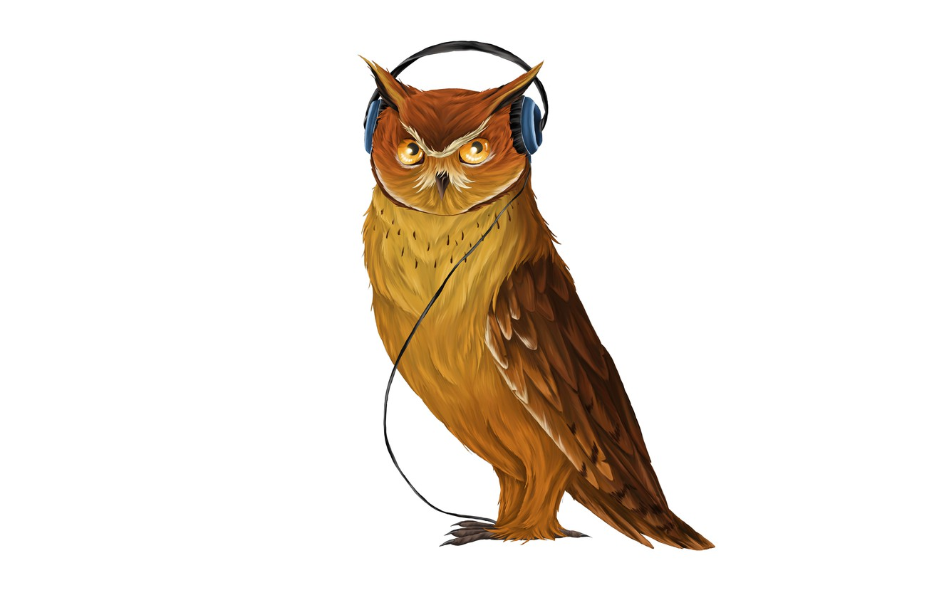 Photo wallpaper music, owl, bird, headphones, light background, owl