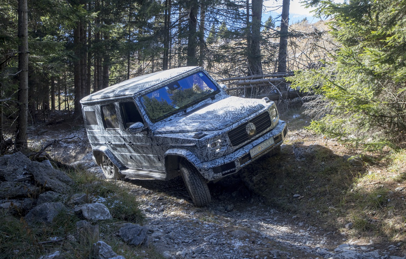 Photo wallpaper forest, trees, stones, Mercedes-Benz, disguise, test, 2018, G-Class