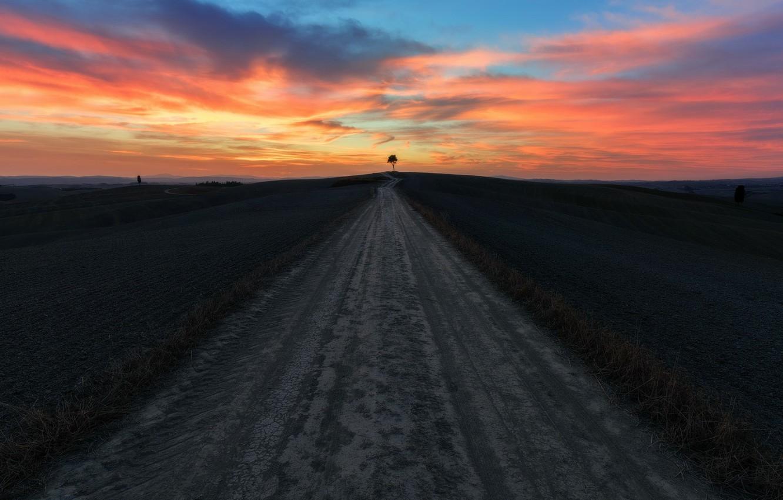 Photo wallpaper trees, sunset, Road