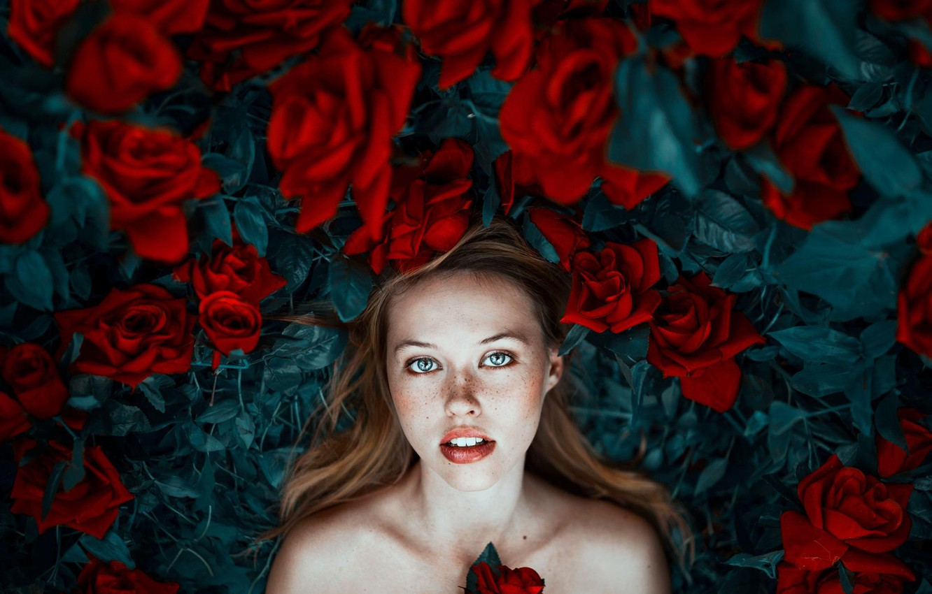 Photo wallpaper look, girl, flowers, mood, roses, freckles, Ronny Garcia, Patty Anwandter