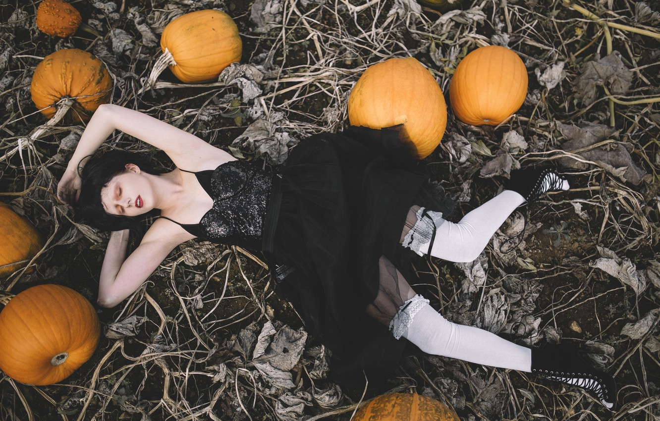 Photo wallpaper field, girl, pose, the situation, stockings, dress, pumpkin