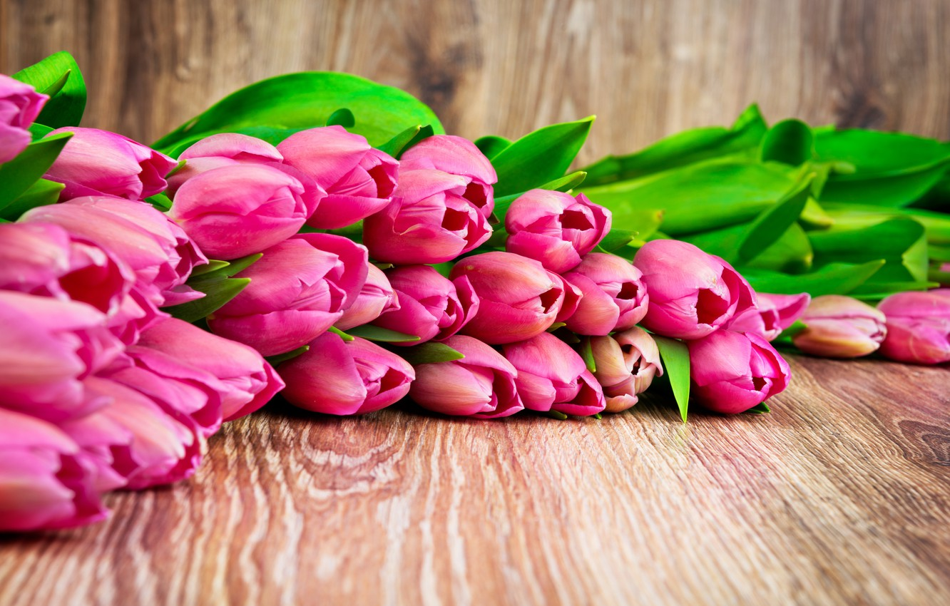 Photo wallpaper bouquet, tulips, love, fresh, pink, flowers, romantic, tulips, gift, pink tulips