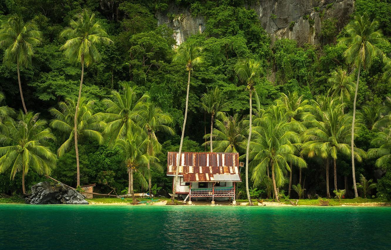 Photo wallpaper sea, greens, trees, tropics, palm trees, rocks, shore, house, Philippines, The Nest