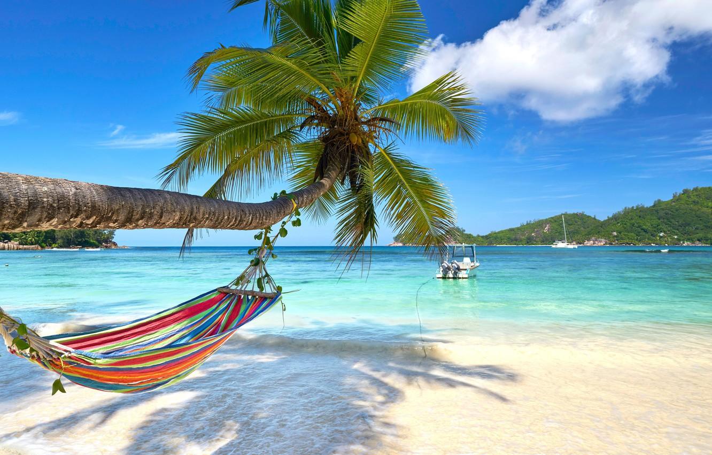 Photo wallpaper sand, sea, beach, the sun, palm trees, shore, summer, beach, sea, island, sand, paradise, palms, …