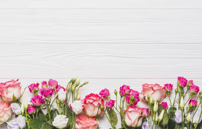 Photo wallpaper Flowers, Background, Roses, Eustoma