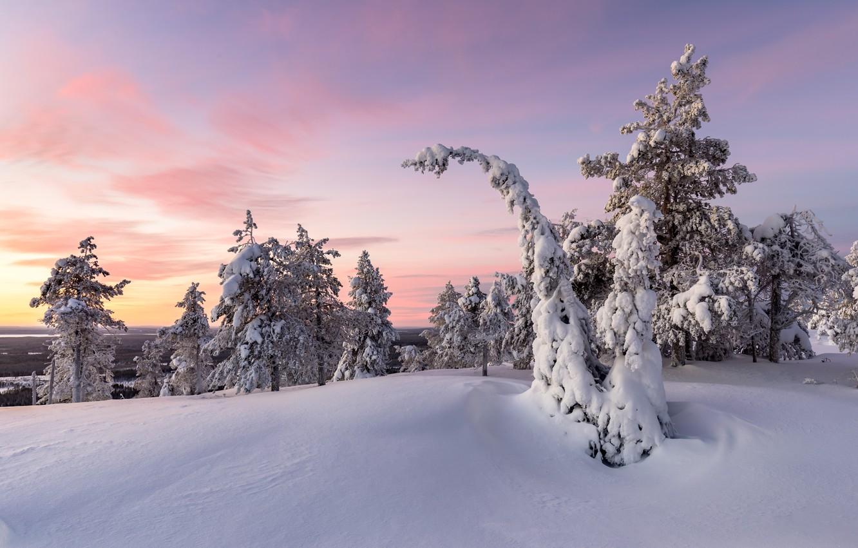 Photo wallpaper winter, snow, sunset
