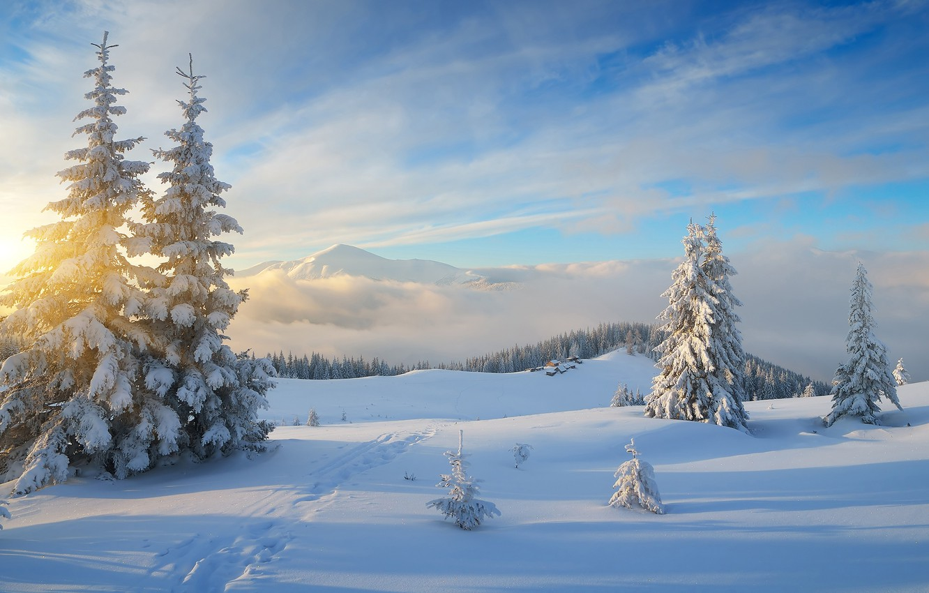 Photo wallpaper winter, forest, the sky, the sun, clouds, rays, snow, landscape, mountains, hills, trails, beauty, ate, …