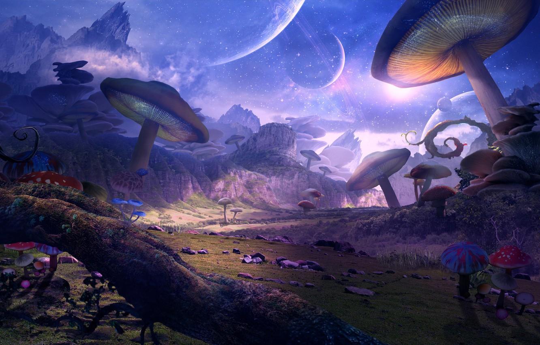 Photo wallpaper mushrooms, planet, art, fantasy