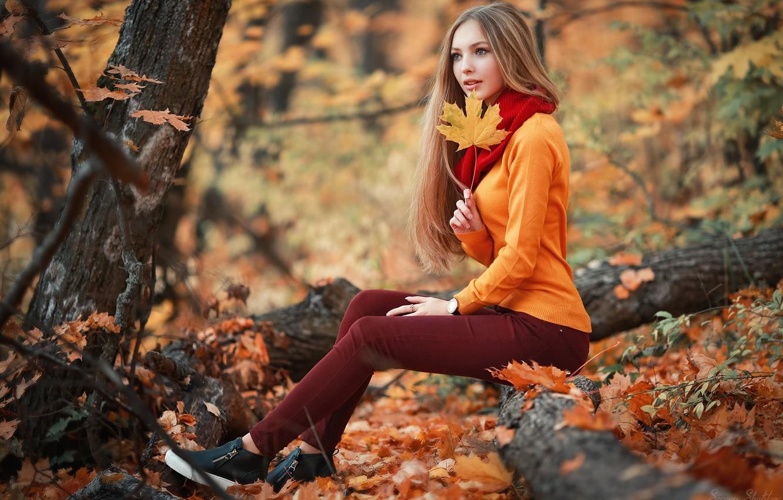 Photo wallpaper autumn, girl, trees, sheet, foliage