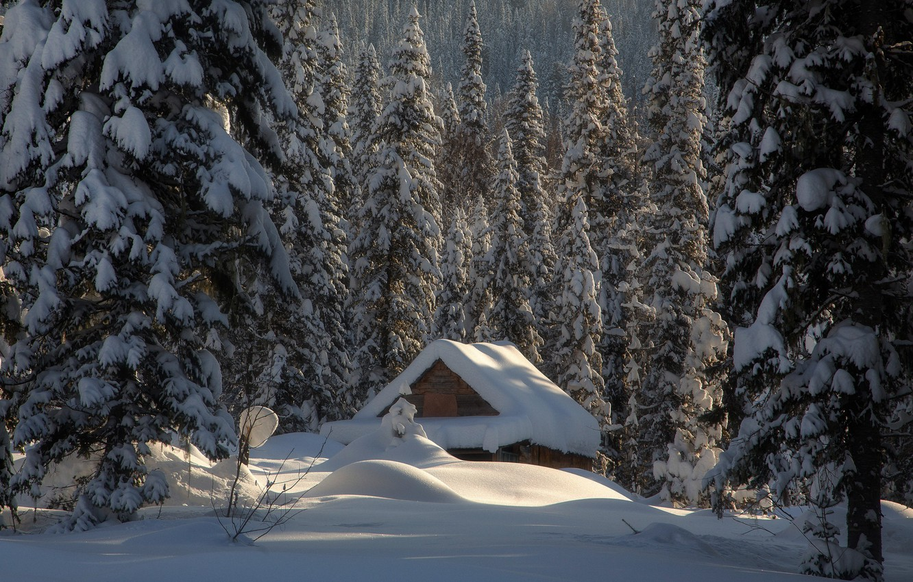 Photo wallpaper winter, forest, snow, hut, ate, the snow, hut, Russia