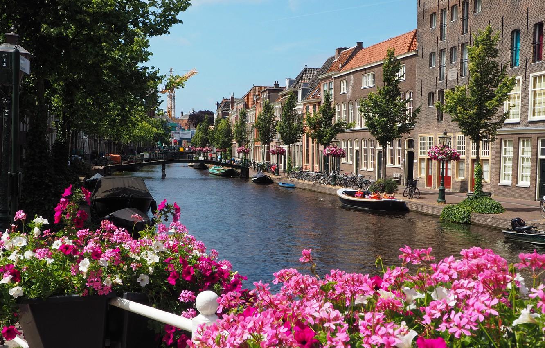 Photo wallpaper flowers, river, Home, boats, Street, Building, Flowers, Netherlands, promenade, Bridge, Flowers, Street, Netherlands, The bridge, …