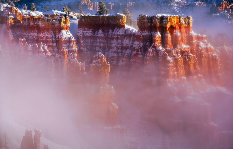 Photo wallpaper winter, snow, fog, canyon