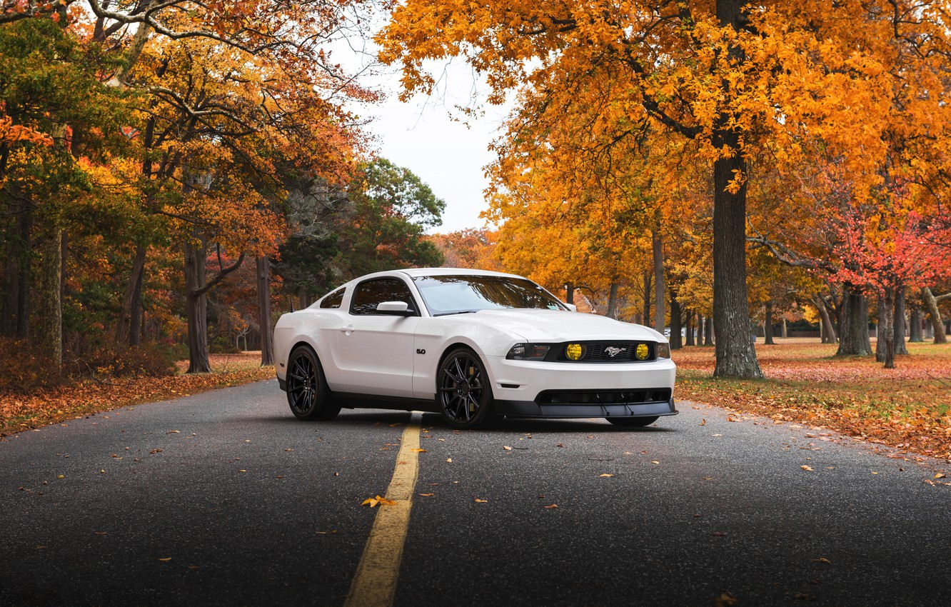 Photo wallpaper Mustang, Ford, white, '2009