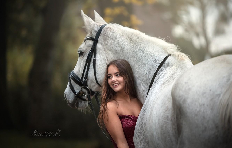Photo wallpaper girl, horse, horse