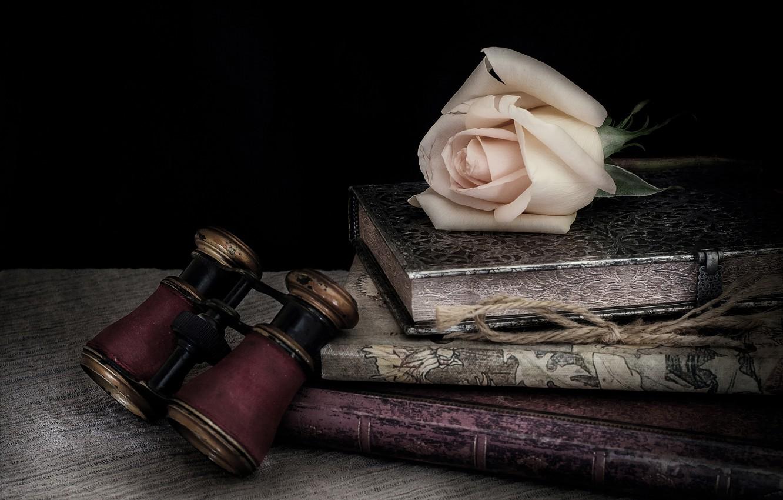 Photo wallpaper style, rose, books, Bud, binoculars