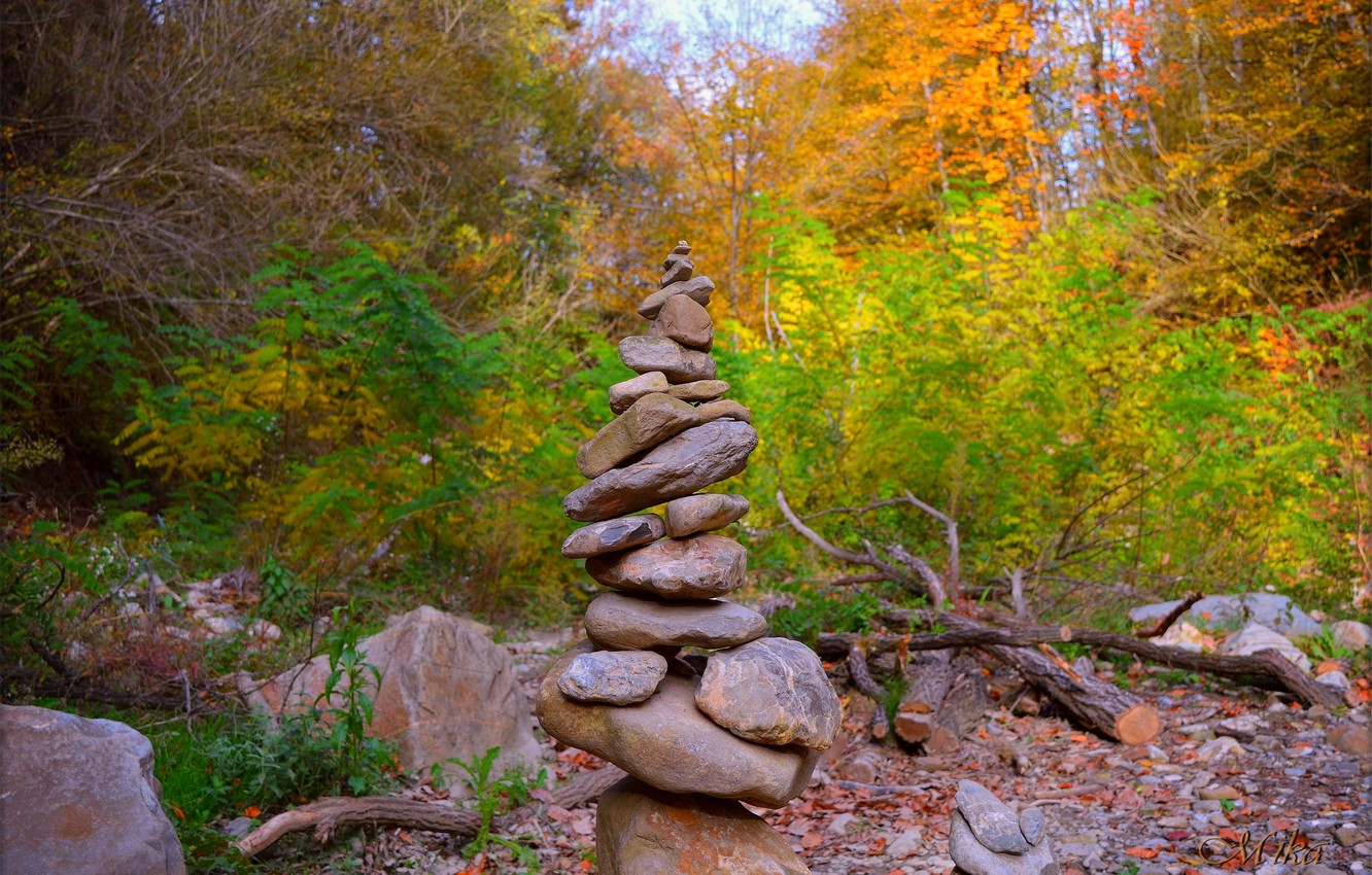 Photo wallpaper Autumn, Forest, Stones, Fall, Autumn, Forest