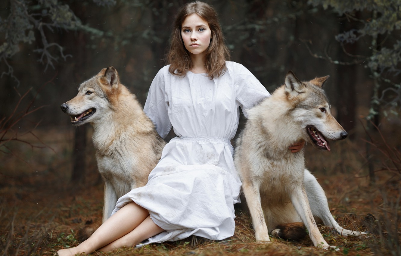 Photo wallpaper girl, wolves, Svetlana Nicotine