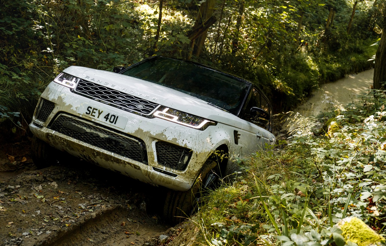 Photo wallpaper road, forest, plants, puddle, dirt, track, Land Rover, black and white, Range Rover Sport P400e …