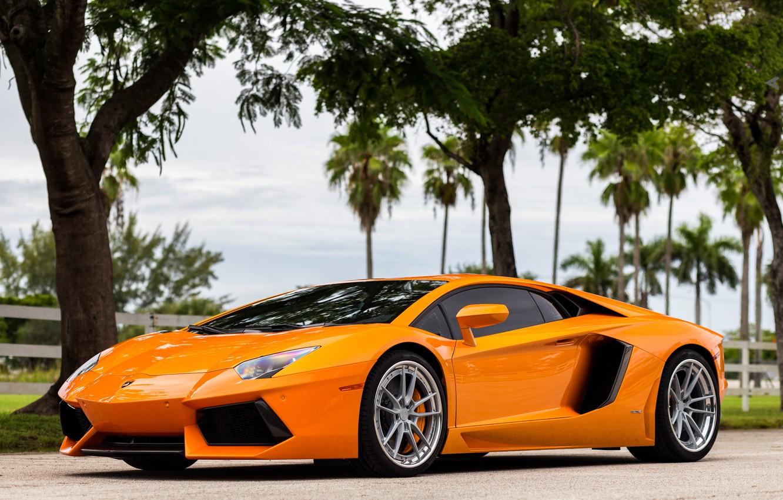 Photo wallpaper Lamborghini, Aventador, Wheels, ANRKY