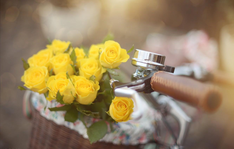 Photo wallpaper flowers, bike, basket, roses