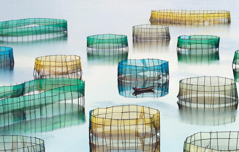 Photo wallpaper water, network, boat, fisherman, China