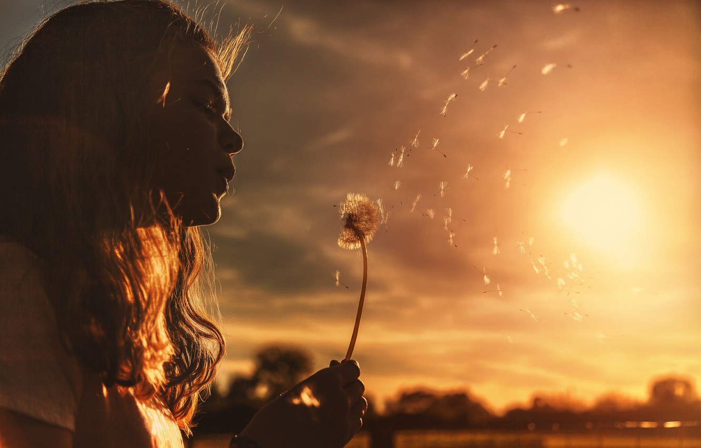 Photo wallpaper the sun, mood, dandelion, girl