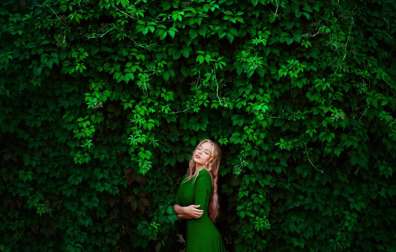 Photo wallpaper greens, girl, blonde, photographer, Elena, green dress, wild grapes, Lena, in a green dress, Ann …