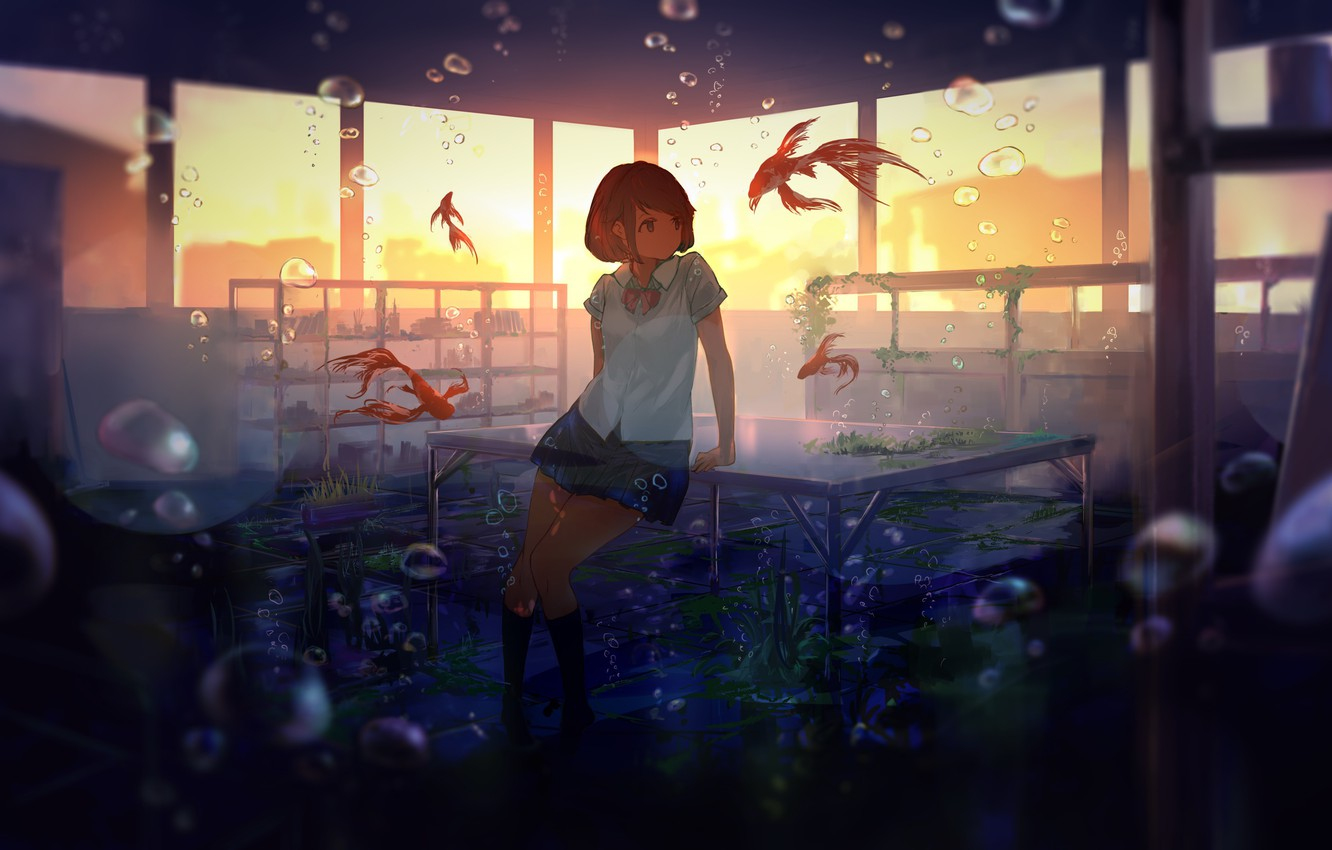 Photo wallpaper fish, algae, sunset, bubbles, table, Windows, class, schoolgirl, under water