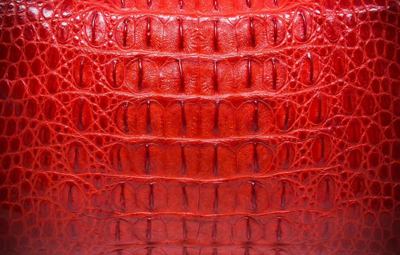 Wallpaper Red Background Leather Crocodile Red Texture