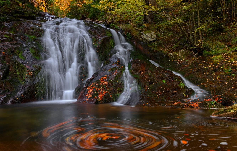 Photo wallpaper autumn, forest, nature, waterfall, stream