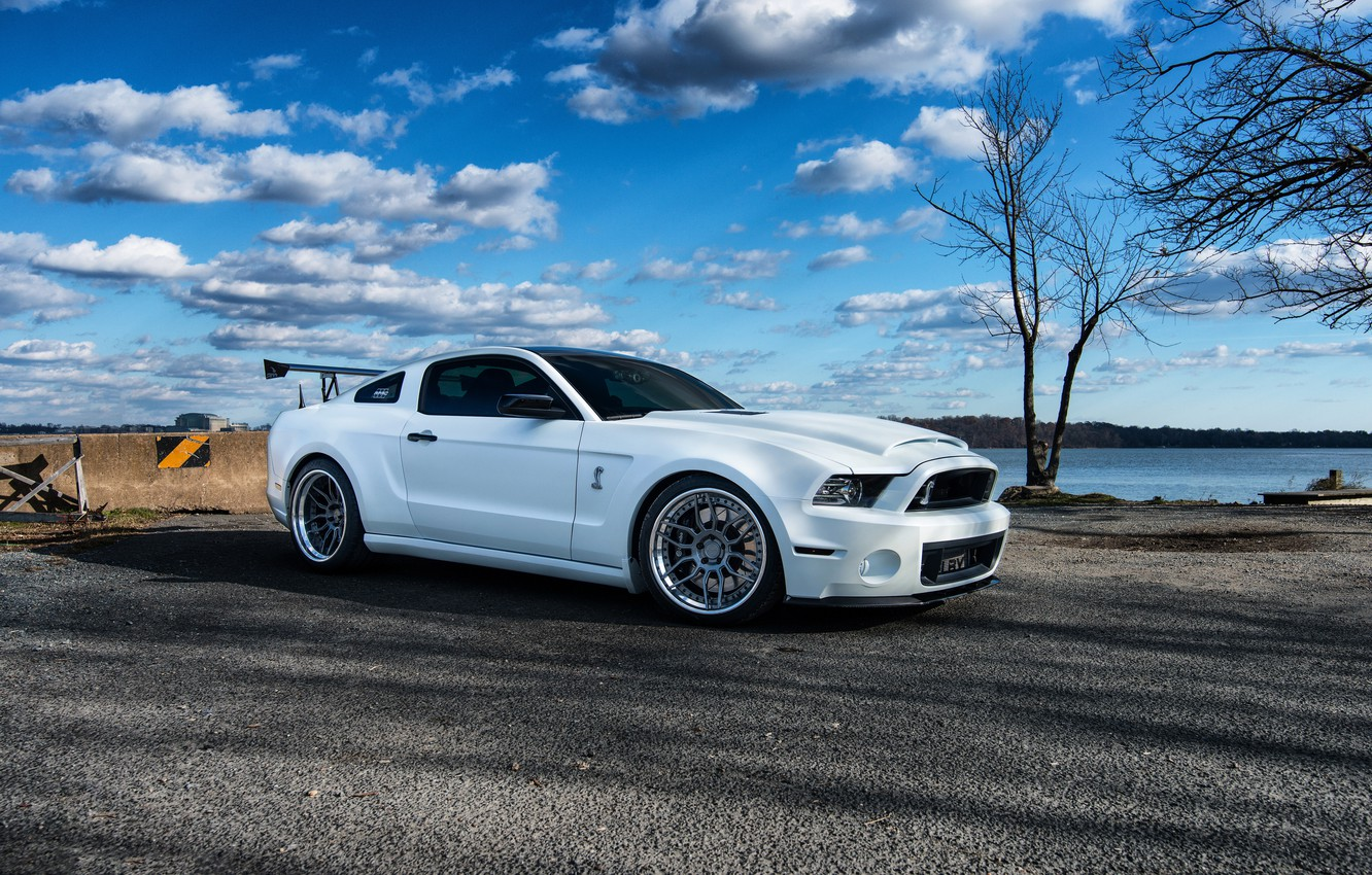 Photo wallpaper GT500, Wheels, FORD, Niche, SHELBY, Whute