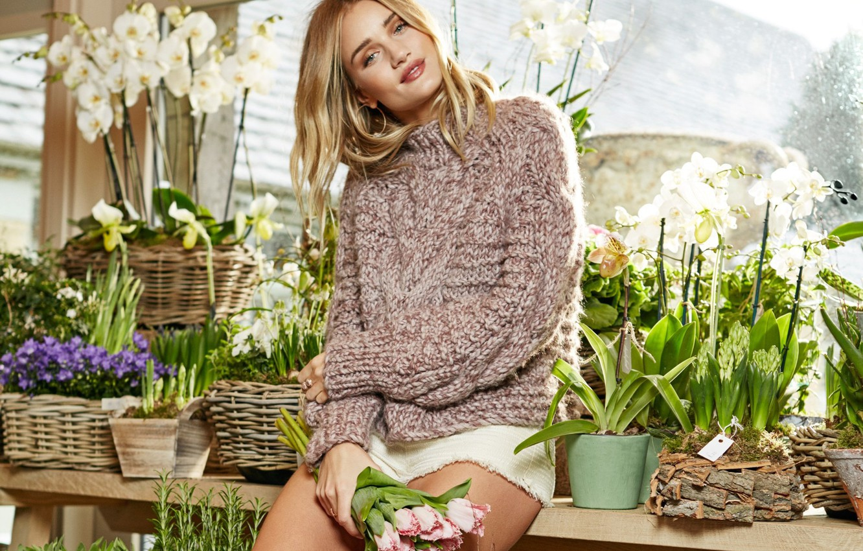 Photo wallpaper flowers, model, blonde, orchids, sweater, Rosie Huntington-Whiteley
