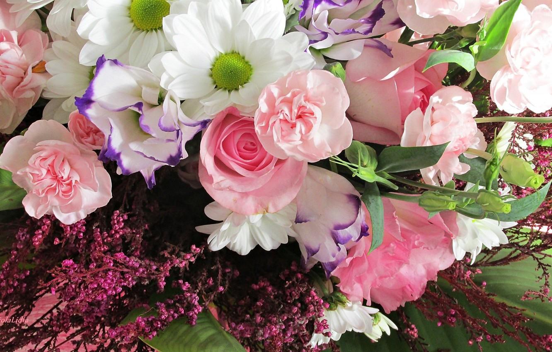 Photo wallpaper roses, bouquet, pink, chrysanthemum, clove