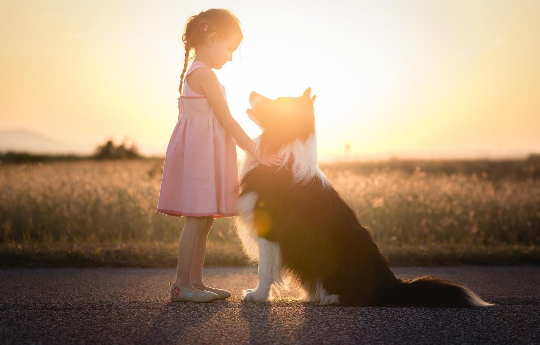 Photo wallpaper light, dog, girl