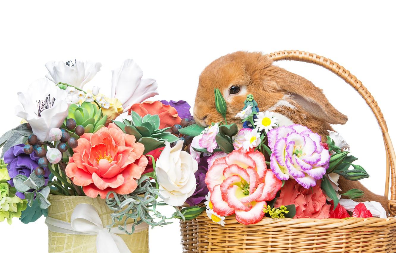 Photo wallpaper flowers, basket, rabbit, Easter, happy, rabbit, flowers, spring, Easter, eggs, bunny, decoration