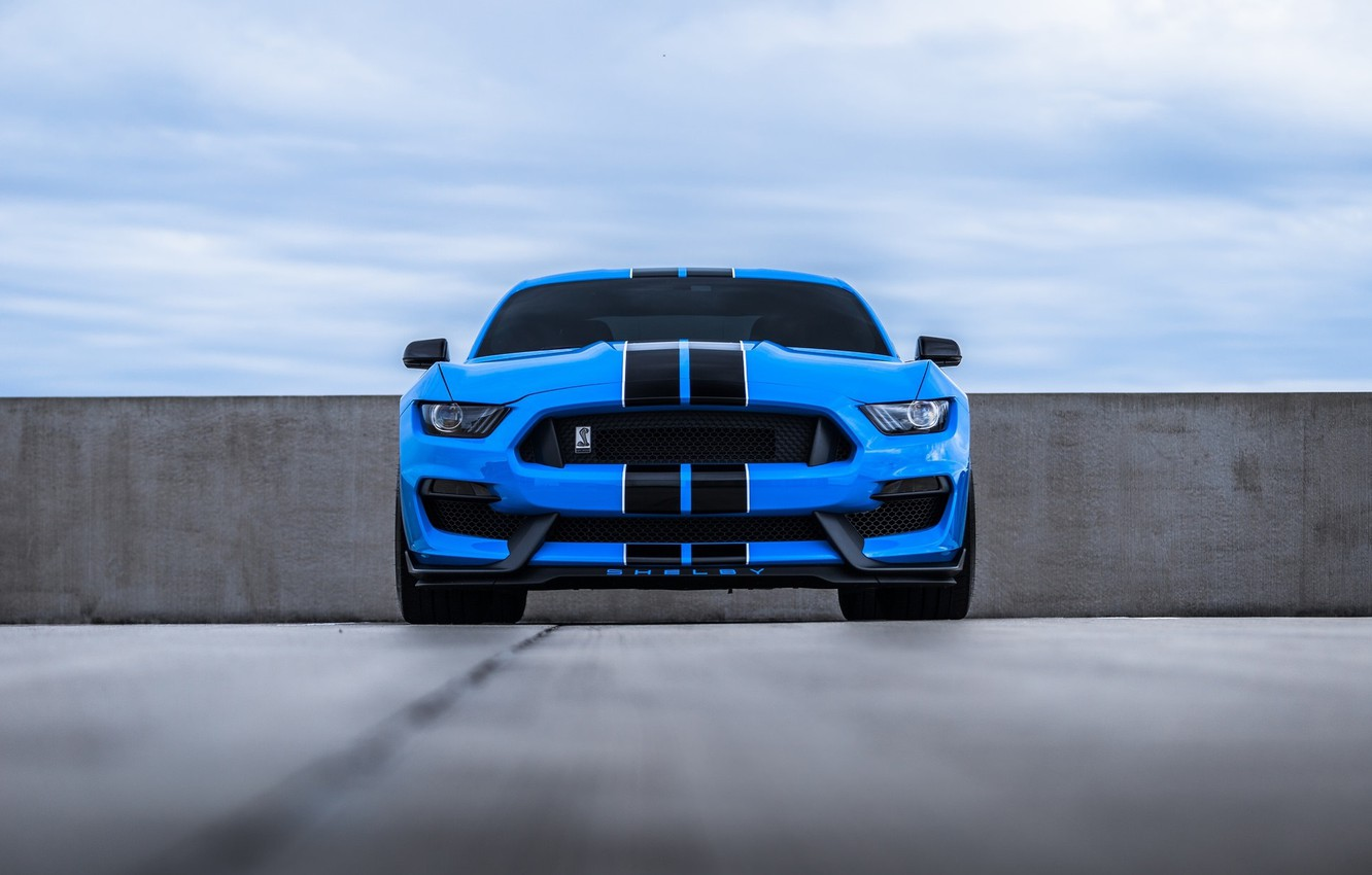 Photo wallpaper Mustang, Ford, Blue, Front, Cobra, Face, Sight