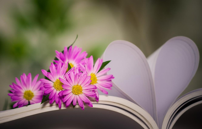 Photo wallpaper flowers, heart, book, bokeh