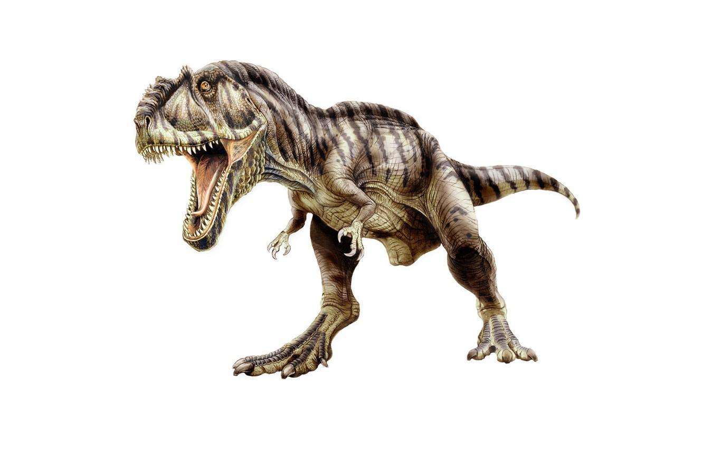 Photo wallpaper dinosaur, predator, mouth, tail, fangs