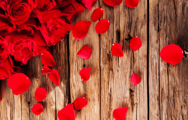 Photo wallpaper flowers, roses, petals, buds
