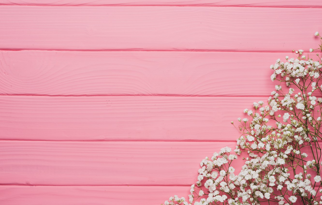 Wallpaper Flowers Background Tree Pink Texture Pink Flowers