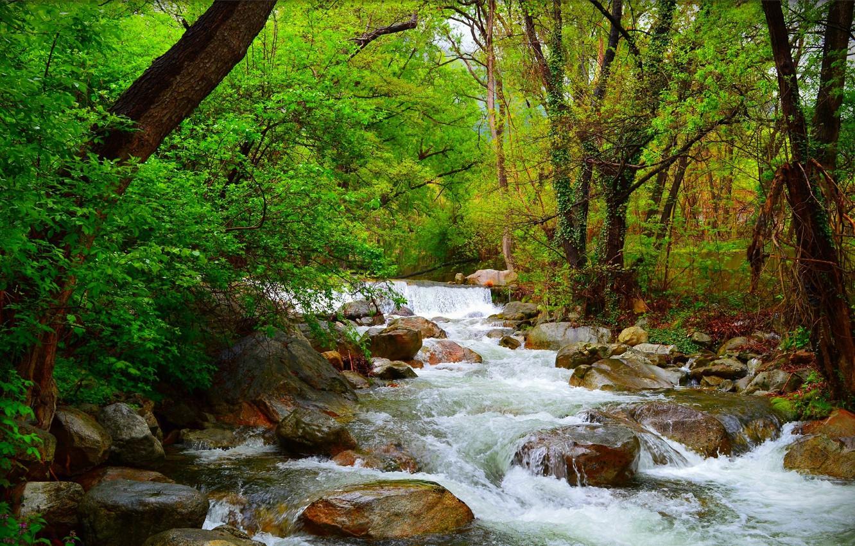 Photo wallpaper river, Greens, Nature, Stream, Spring, Waterfall, Stones, Nature, Spring, Waterfall, Flow