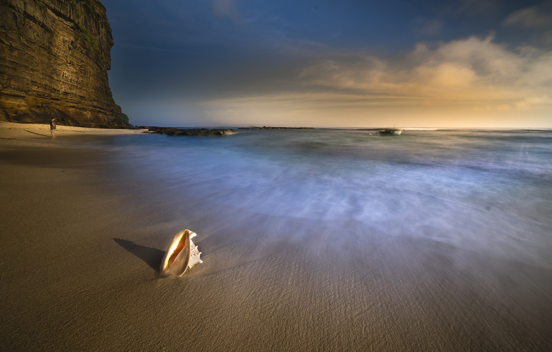 Photo wallpaper sand, sea, shore, Nature, shell