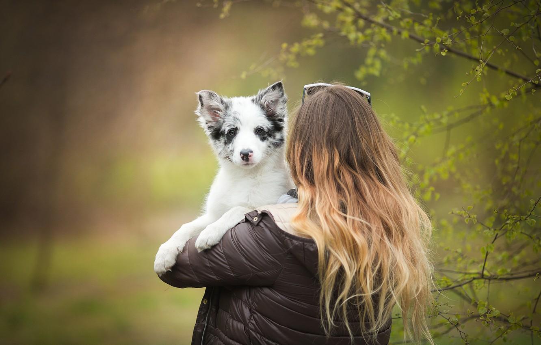 Photo wallpaper girl, dog, puppy, Nami