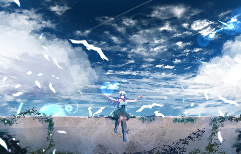 Photo wallpaper the sky, girl, birds