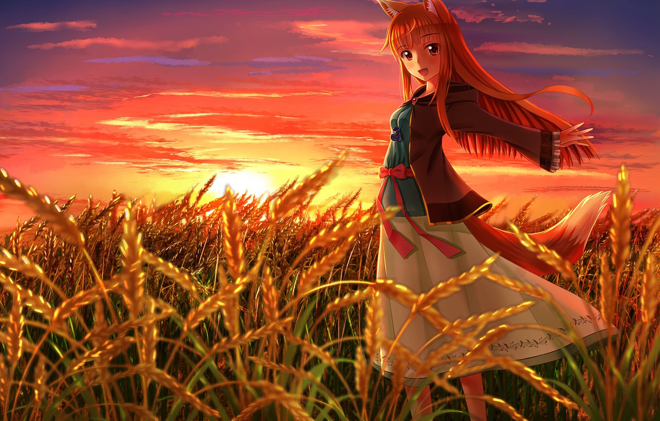 Photo wallpaper The sun, Field, Ears, Eyes, Anime, Wheat, Anime, Horo, Red, Sun, Spice and wolf, Holo, ...