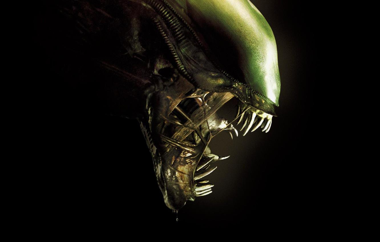 Photo wallpaper green, cinema, ufo, monster, Alien, movie, fang, film, head