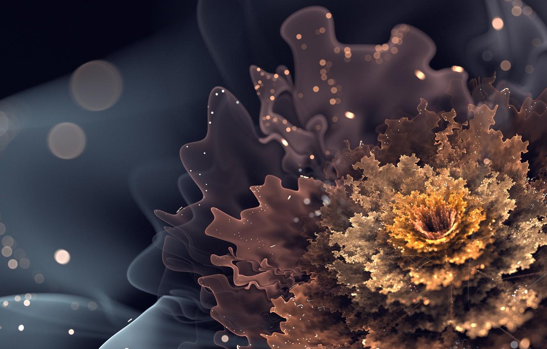 Photo wallpaper flower, glare, stream, flower